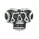 Stainless Steel skull ring SRC2047